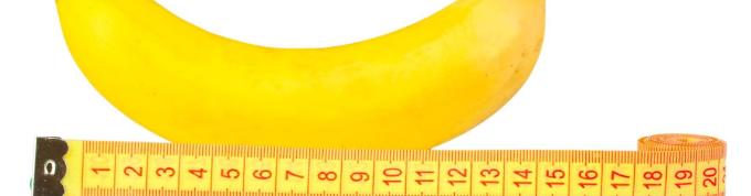 ペニスの大きさ